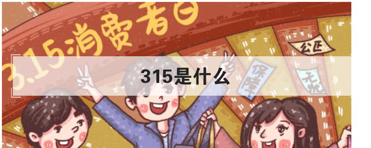 315是什么